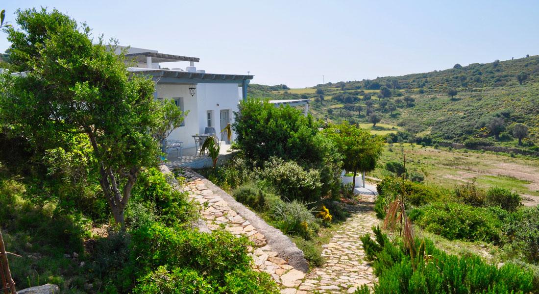 La Villa M, une maison au coeur de la nature à Lipsi